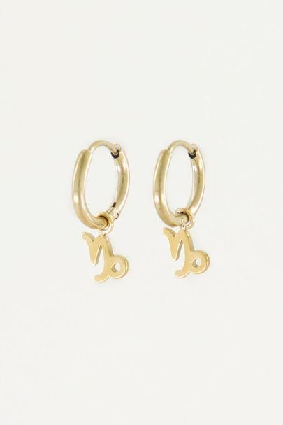 Oorringen sterrenbeeld bedel, zodiac sign earrings