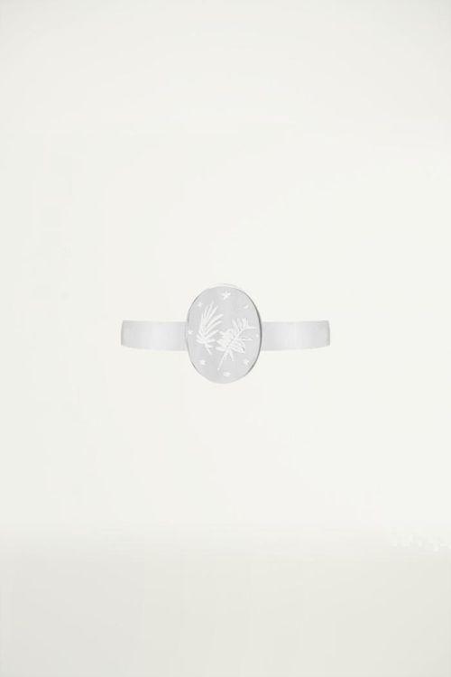 Ring roestvrij staal plaatje bladeren sterren, minimalistische ringen