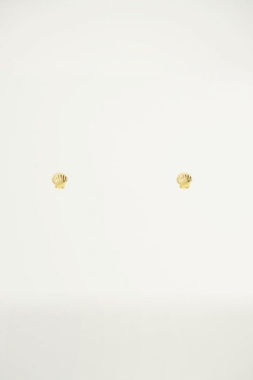 Studs klein schelpje, Minimalistische oorbellen