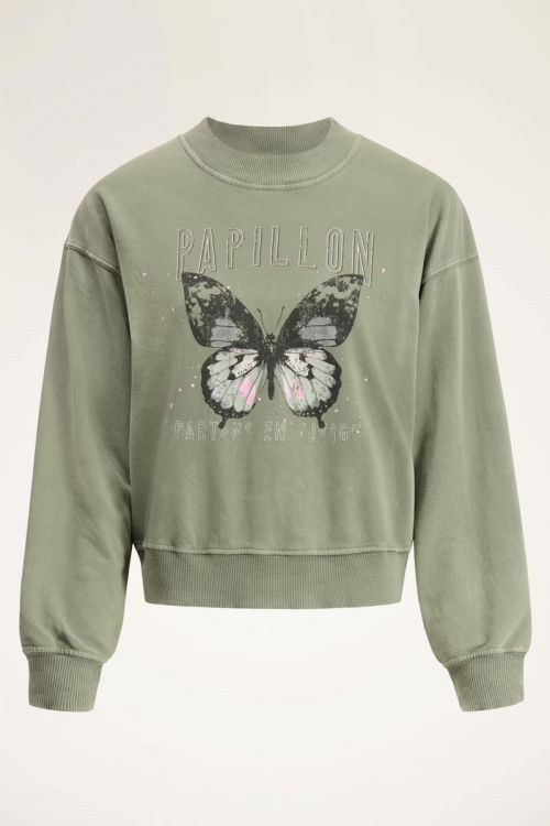 Groene sweater vlinder   My Jewellery