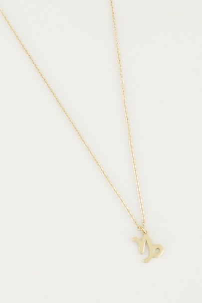 Ketting sterrenbeeld bedel, zodiac sign necklace