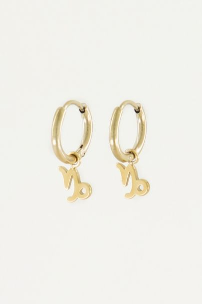 Oorringen sterrenbeeld bedel, zodiac sign earrings