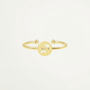 Sterrenbeeld ring, zodiac sign
