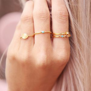 Dubbele ring strass