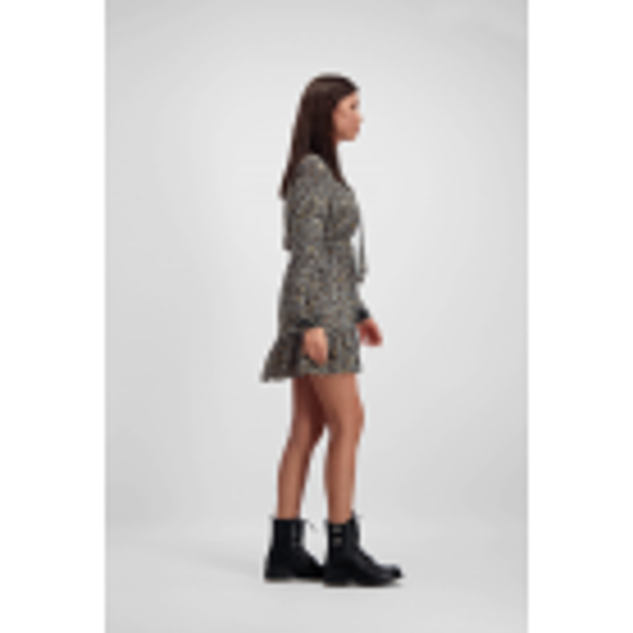 Grijze A-lijn jurk luipaard print, a lijn jurk - styleshoots afbeelding - voorzijde